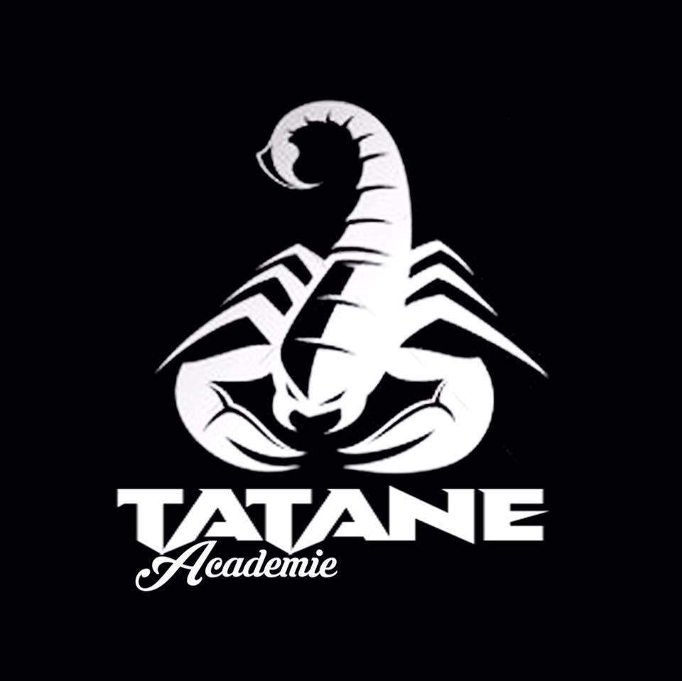 logo-tatane-academie